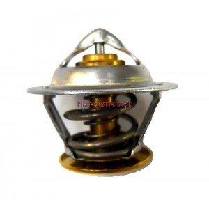 Thermostat lombardini