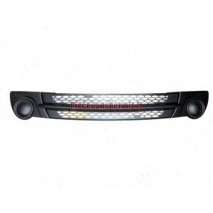 Grille before microcar mgo
