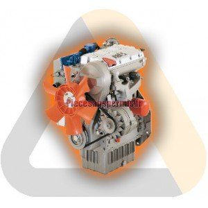 Complete engine lombardini ldw502